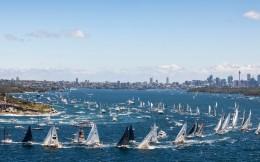 76年來首次!霍巴特帆船賽因疫情影響而取消