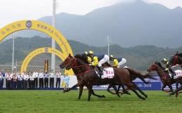 中國速度賽馬競賽規則完成修訂,將于2021年試行